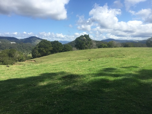 Acreage Mowing Maleny