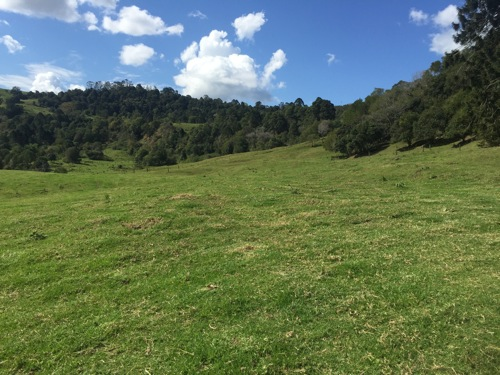 Mowing services Maleny