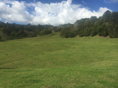 Maleny steep terrain mowing