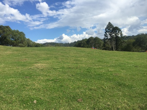Maleny mowing contractor