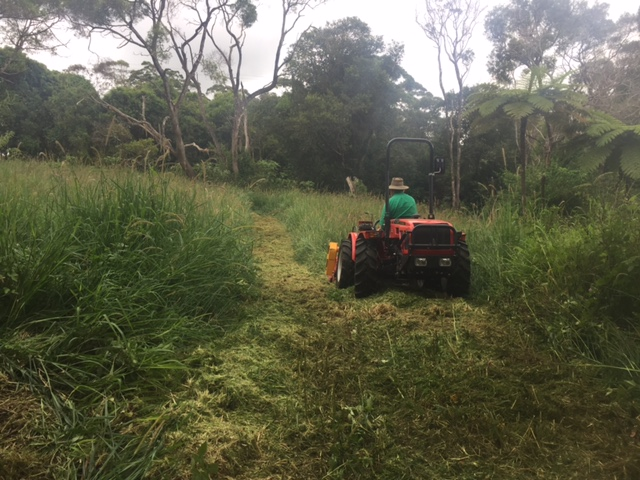 Extreme Mowing QLD