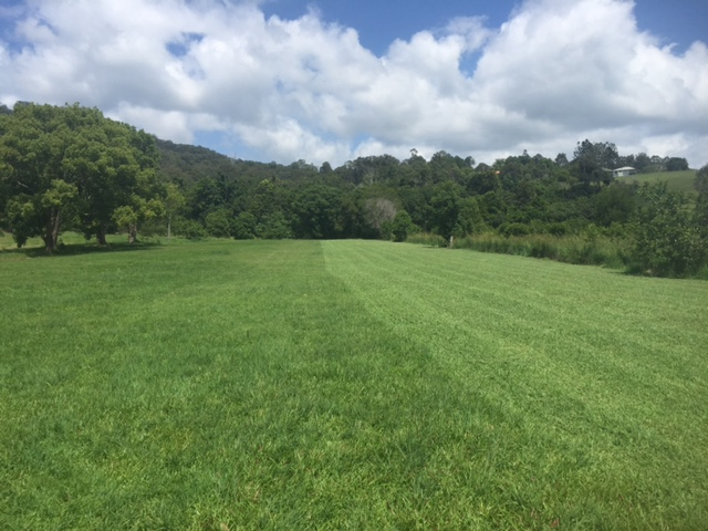 The finish is outstanding. Our flail mower gives an amazing paddock mow