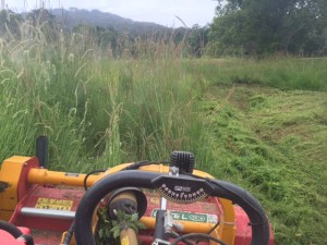Acreage Mowing