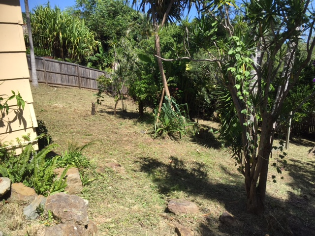 back yard clean up Sunshine Coast
